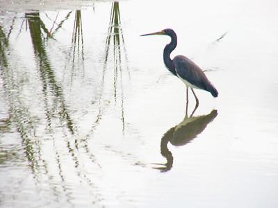 Kayak Belize_March 2005