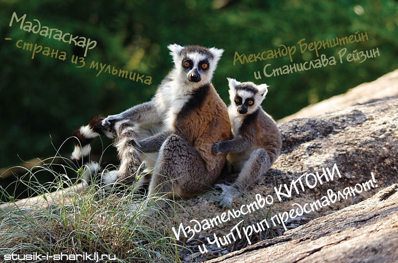 MadagascarLecture.jpg