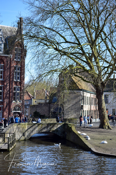 Bruges (622 of 1022).jpg