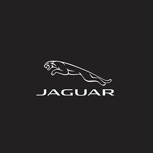 Jaguar | Corrida Track & Field