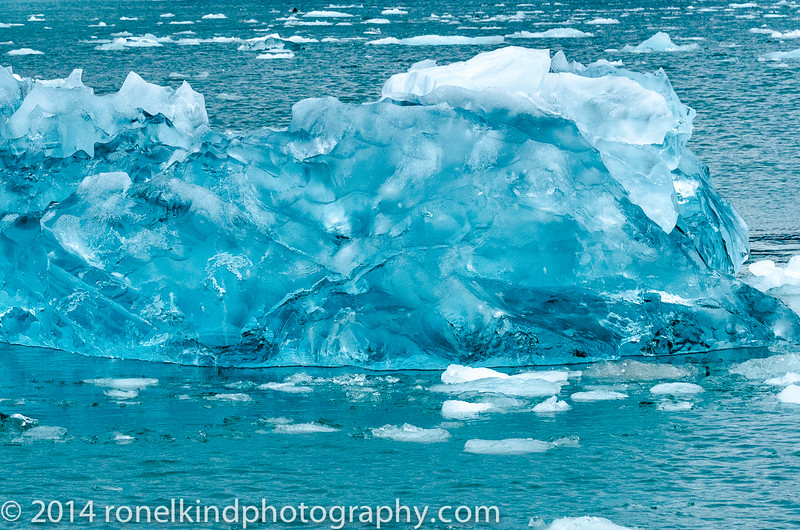 Glaciers-0175.jpg