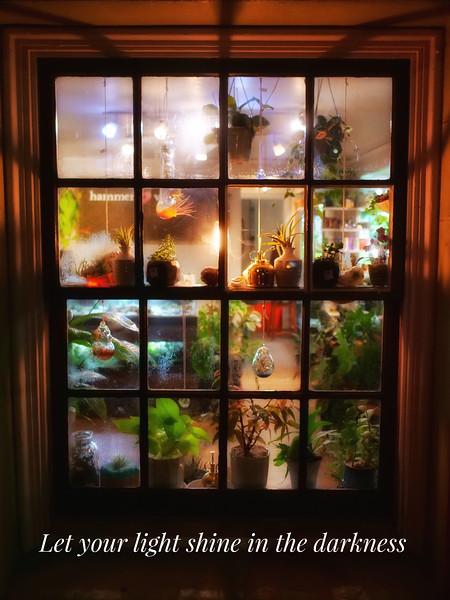 Portland Window.jpg