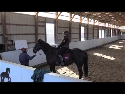 TSRC 2018-11-29 Wildfire Farm Video