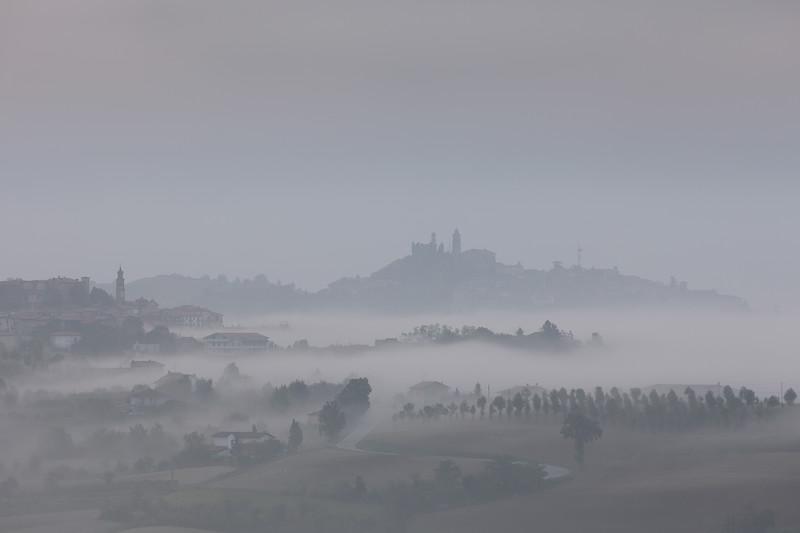 'Monferrato Nebbia', Piedmont, Italy