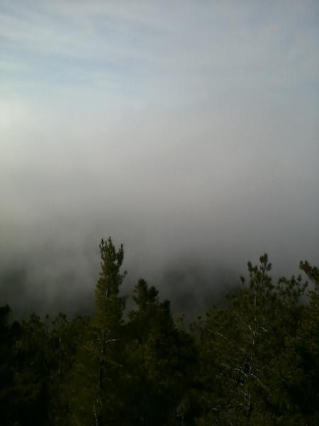 Foggy.jpg