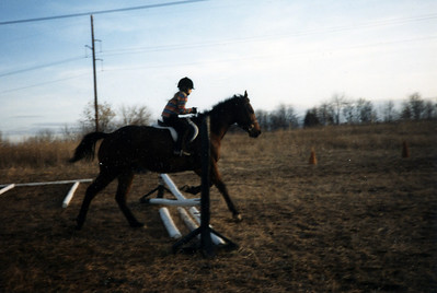 Horseback Riding in the 90's