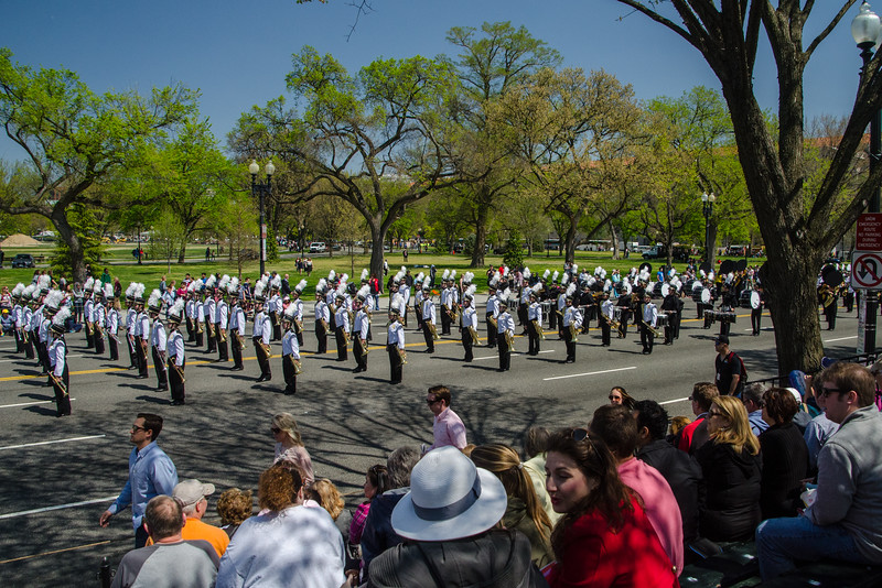 The 2016 Cherry Blossom Parade-133.jpg