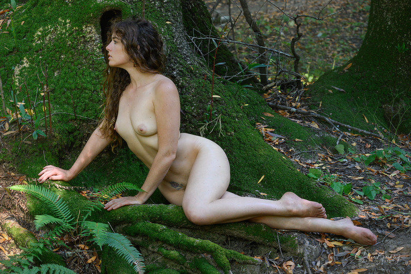Forest Figures III