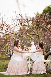 Peach blossoms - Crespo