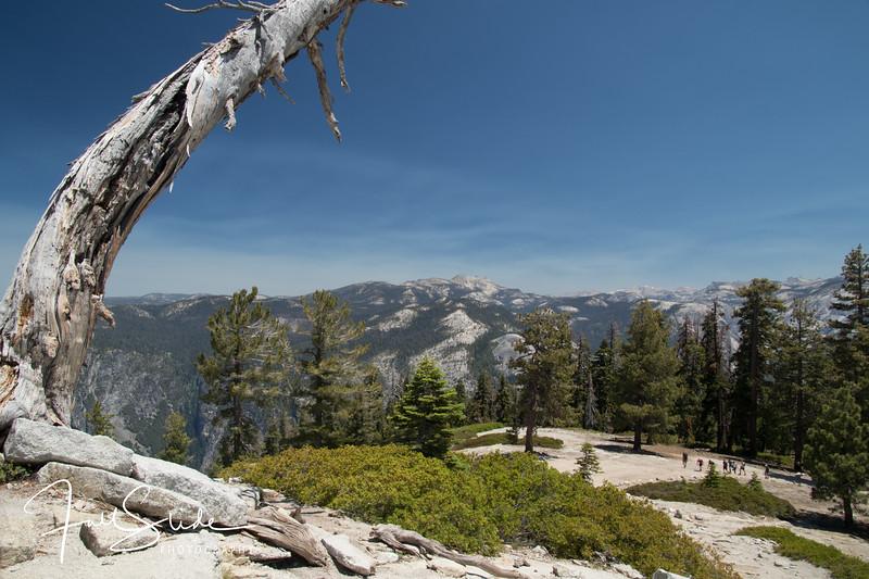 Yosemite 2018 -49.jpg