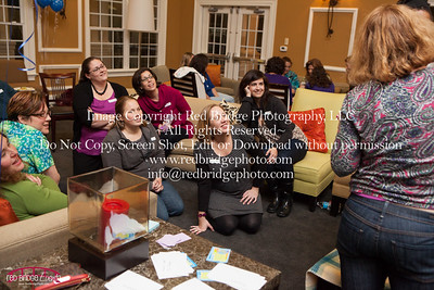 Triangle Mommies 2013 Winter Bash : Raleigh, NC