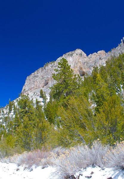 Mojave Desert & Red Rock Canyon, Vegas-DSC_2191-068.jpg