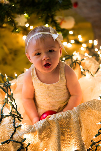 Leah Marie's First Christms 2018 (35).jpg