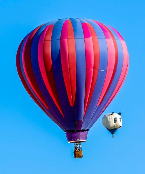 Temecula Balloon Festival-8.jpg
