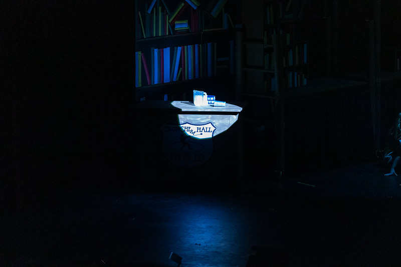 Matilda - Chap Theater 2020-564.jpg