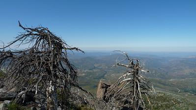 Cuyamaca Peak 7/18/2010