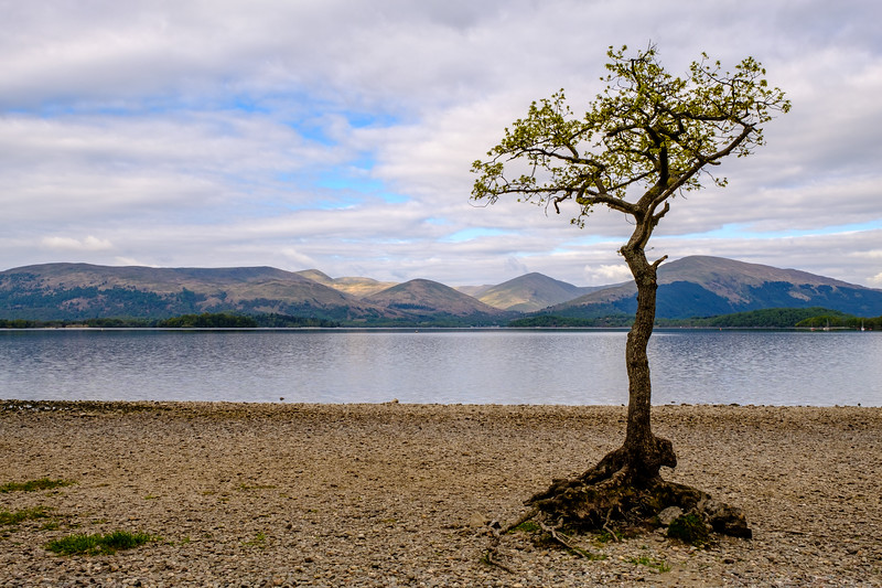 20190505 Loch Lomond 034.jpg
