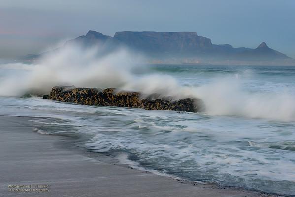 South Africa Cape Peninsula 2014