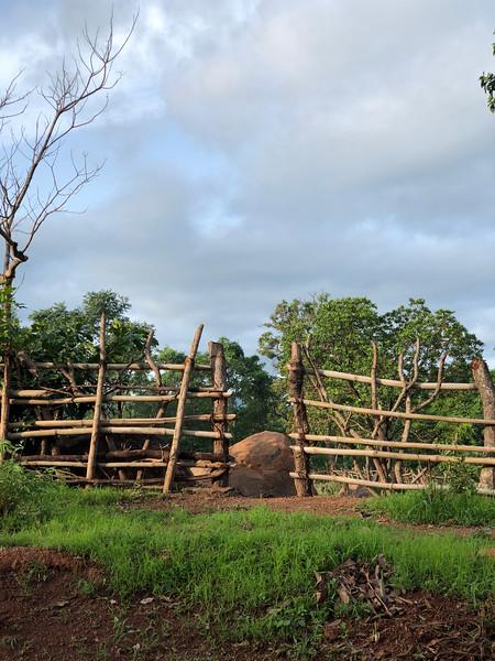 Guinea-99.jpg