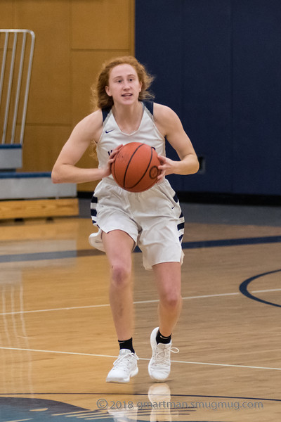 2018-19 Girls Varsity Basketball vs. Skyview