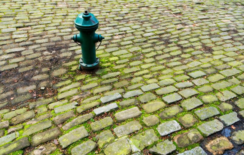 Standing in a Stream of Bricks, Seattle - Washington