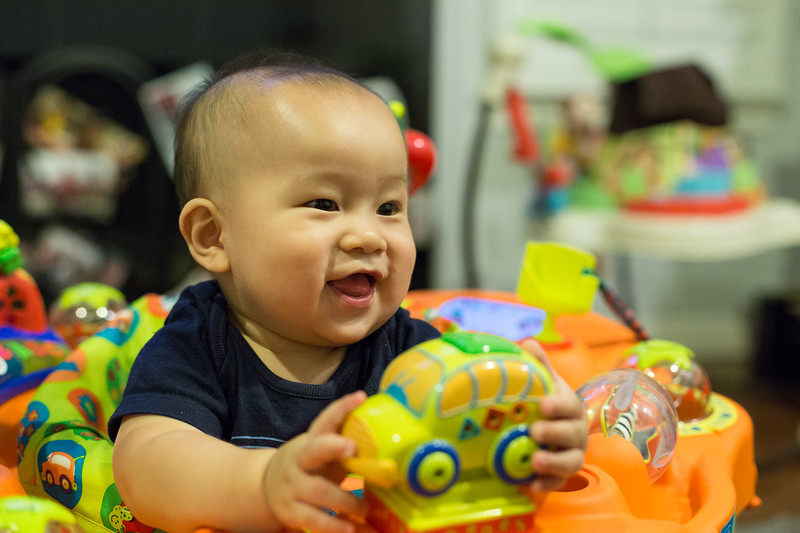 oliver_playing_20150805-17.jpg