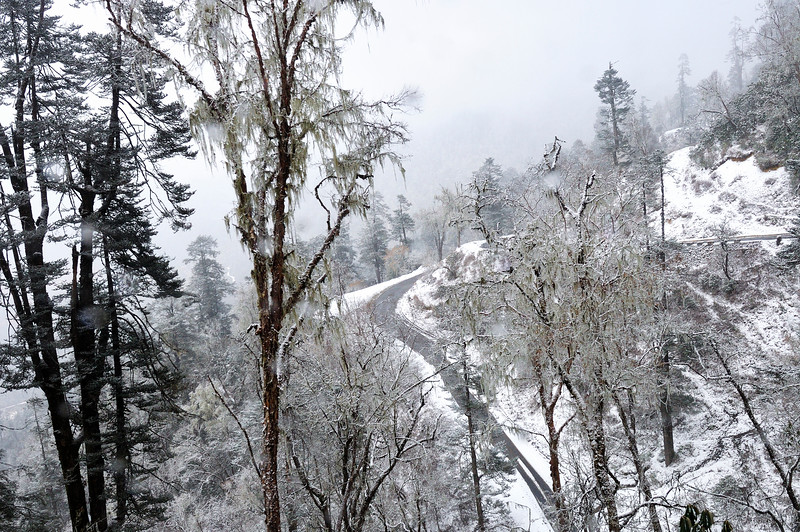 Nature-paints-white-bhutan-snow-phobjikha.jpg