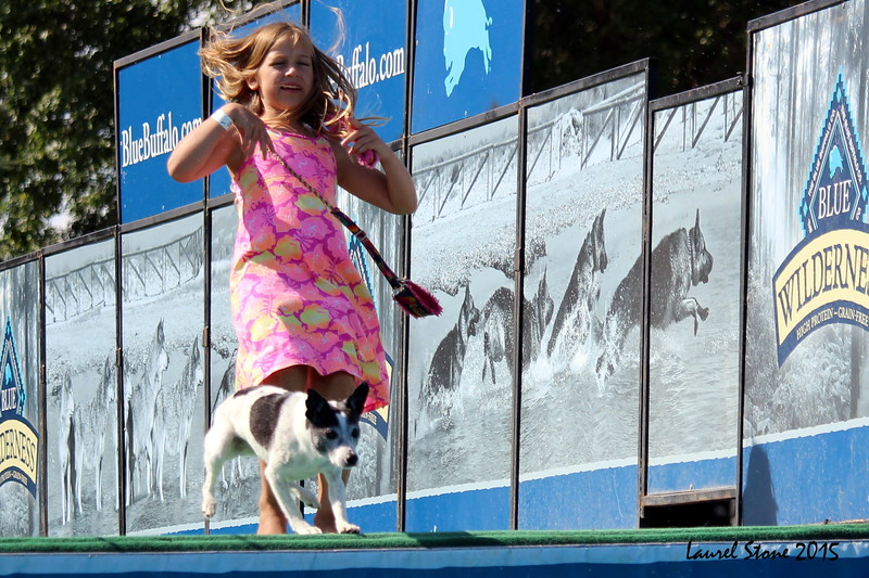 2015.8.5 Winnebago County Fair Dock Dogs (10).JPG