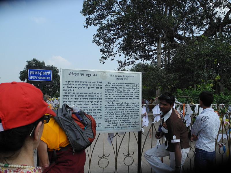 india2011 753.jpg
