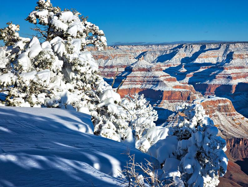 8214 Grand Canyon