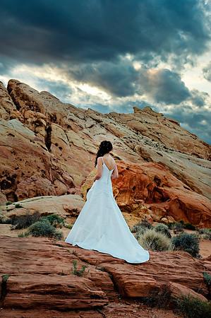 Valley of Fire Bride