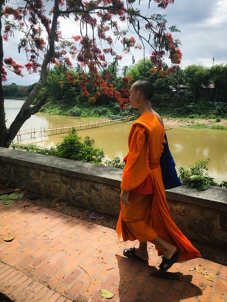 Novice monk in Luang Prabang, Laos