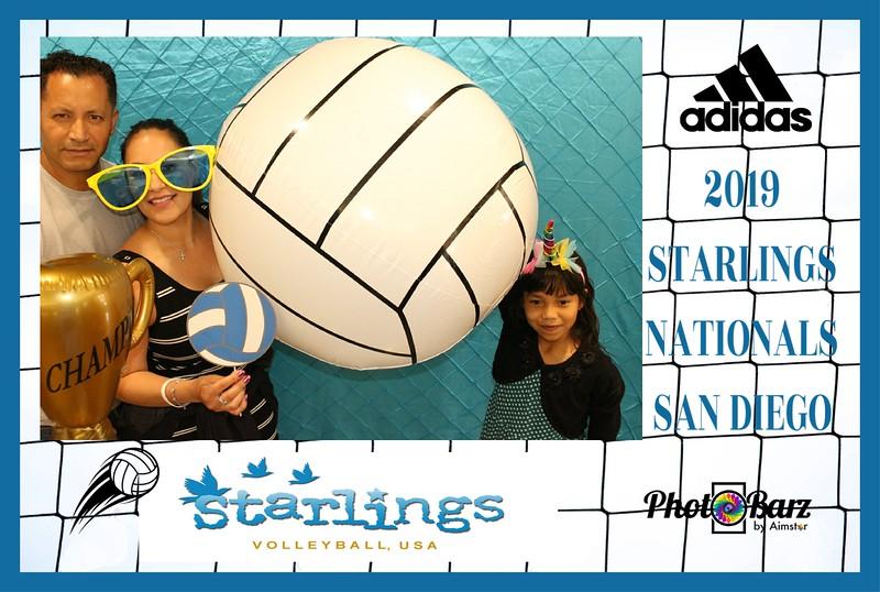 Starlings Volleyball (2).jpg