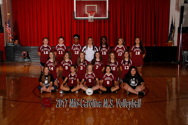 2017 Volleyball Ms
