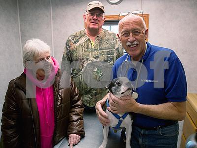 court-exonerates-michigan-tv-veterinarian-jan-pol-who-saved-dog-mr-pigglesworth