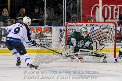 2015-10-03 Moose vs Wild - Fargo ND