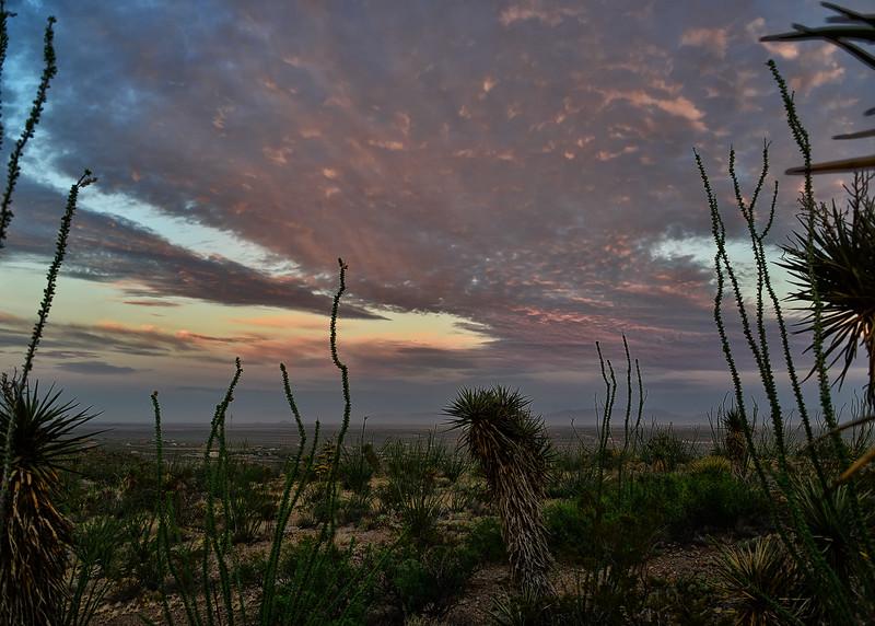NEA_0636-7x5-Sunrise.jpg