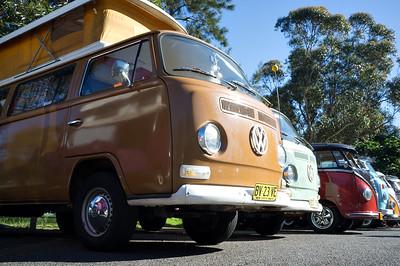 Bugs & Buses 2015