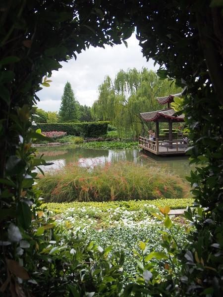 20170303_1203_3885 Hunter Valley Gardens