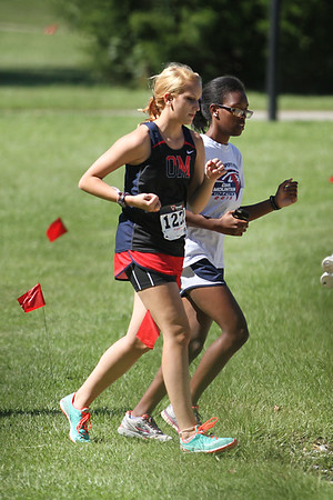 2014 XC Shelby County Championships