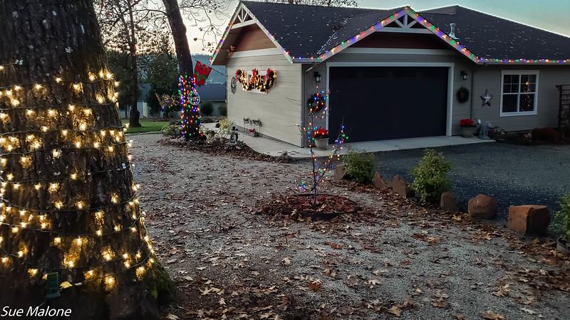 12-01-2020 Christmas Lights Up-4.jpg
