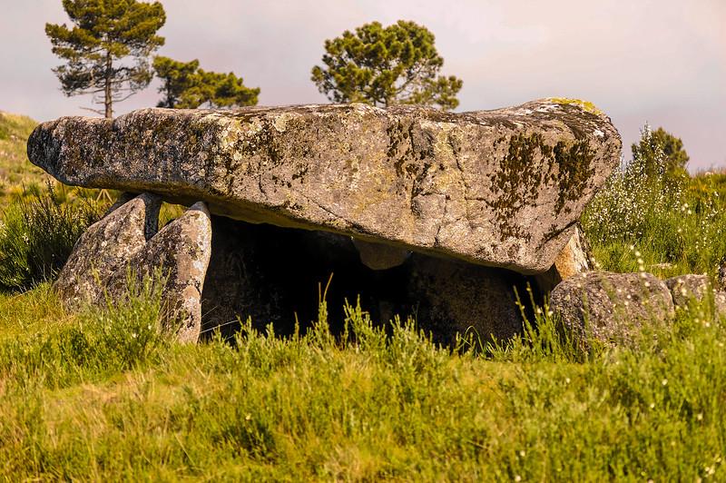 Vouzela-PR2 - Um Olhar sobre o Mundo Rural - 17-05-2008 - 7355.jpg