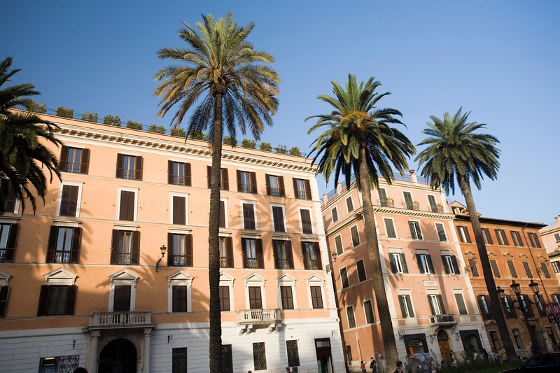 Palm trees and typical Roman houses at Piazza di Spagna
