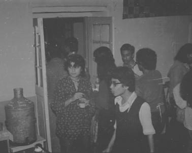 1981 Woodstock