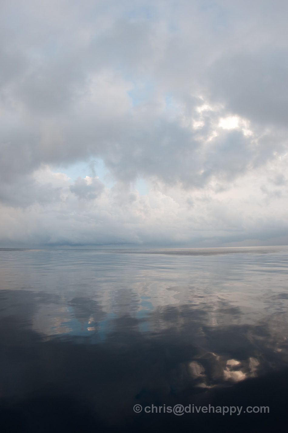 Flat calm seas on an early grey morning © Chris Mitchell
