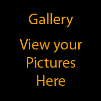 Gallery - View your pictures here