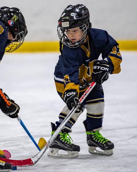 2019-02-03-Ryan-Naughton-Hockey-38.jpg
