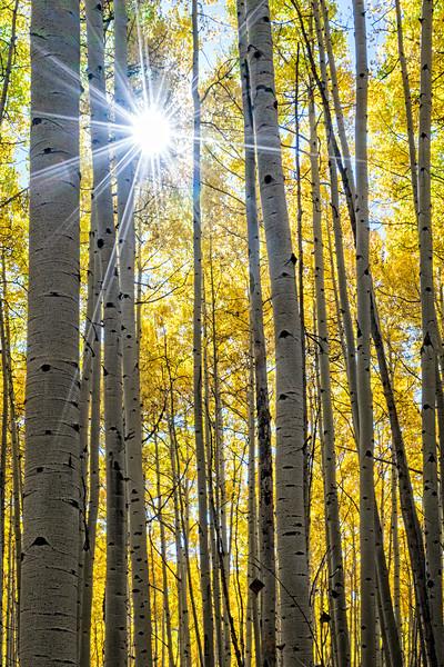 Colorado Fall 2016