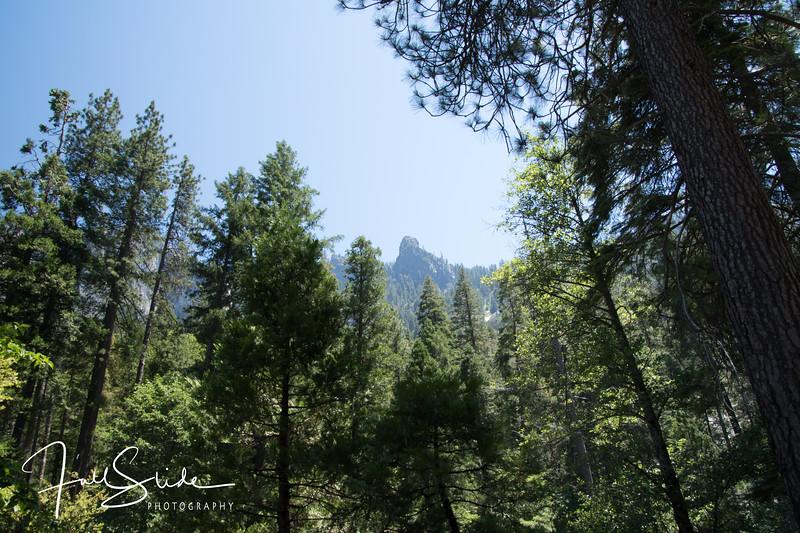 Yosemite 2018 -26.jpg