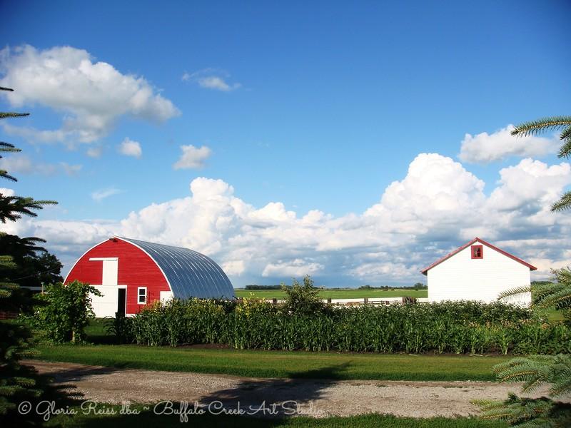 Garden and Barn